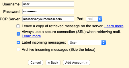 Enter the POP3 settings for your domain's email address